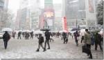 南岸低気圧の影響で2月14日は大雪!Twitterで広まる雪情報