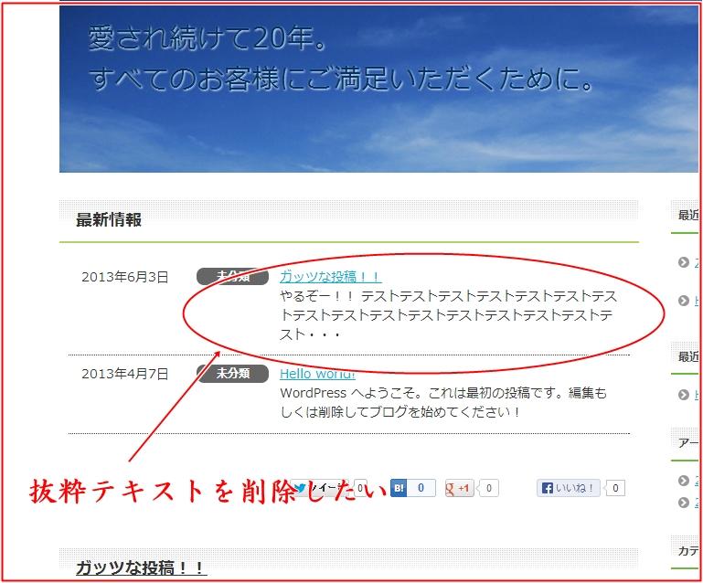 賢威6.0カスタムトップ記事抜粋