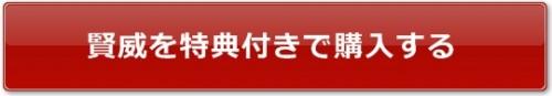 賢威購入特典バナー